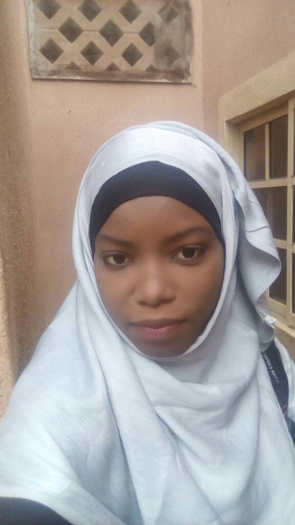 husaina killed during arbaeen symbolic trek from kano on first day